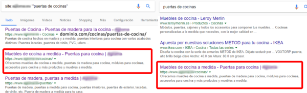 Captura del comando site en Google