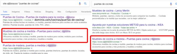 Captura del comando site en Google