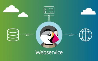 Cómo utilizar la API de PrestaShop