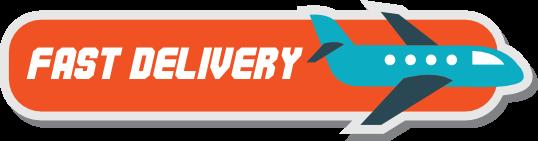 """Ilustración """"Fast Delivery"""""""