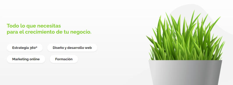 acceseo-agencia-marketing