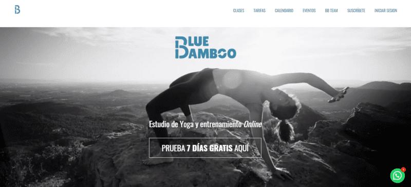 accepreneur-paula-gonzalez-blue-bamboo-studio
